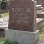 Elizabeth Vos